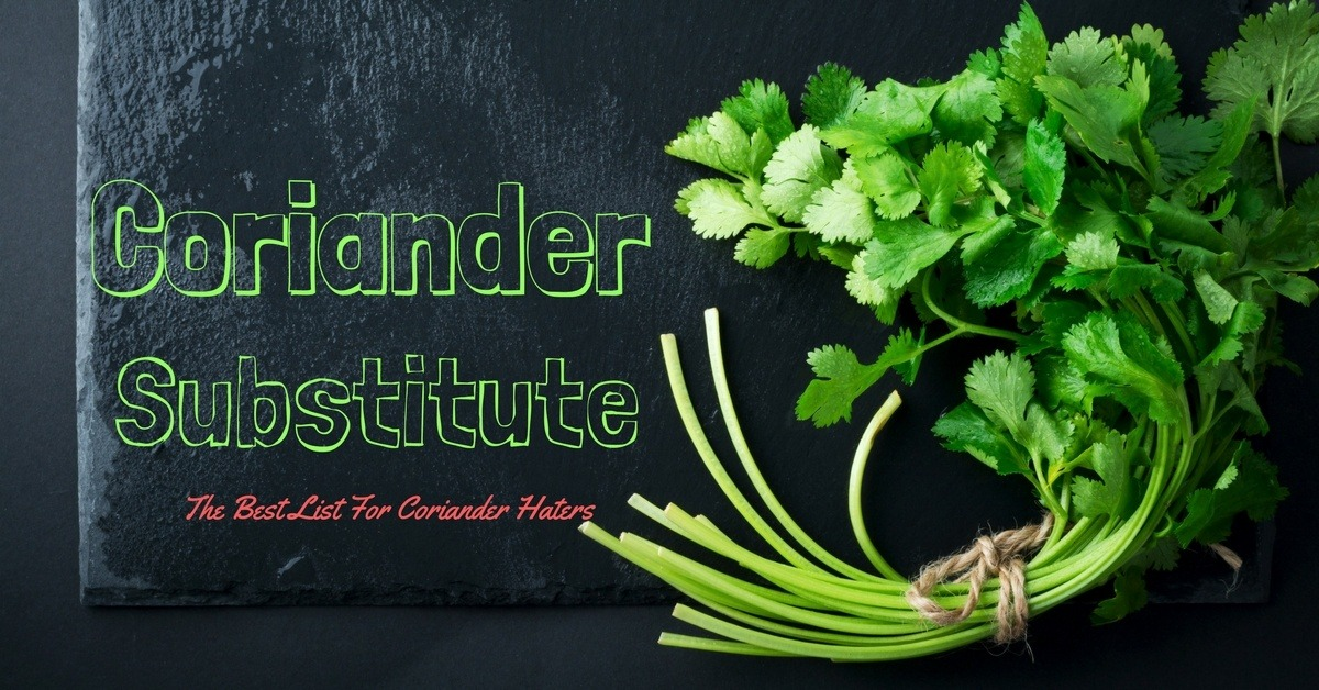 the best herb for Coriander Substitute