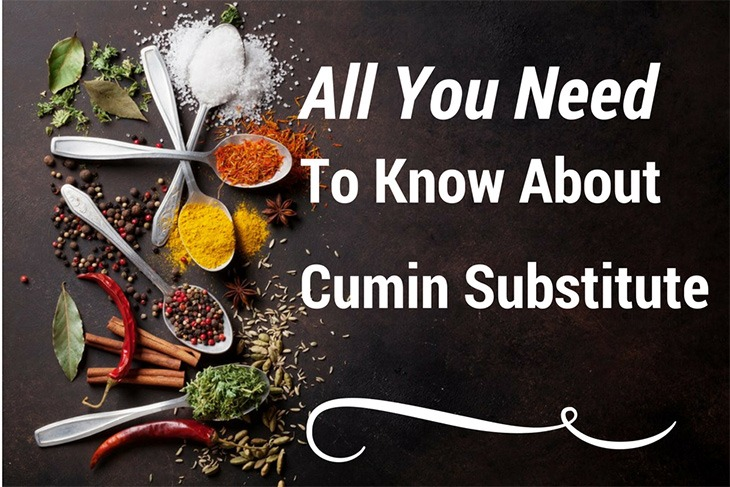 list of cumin substitute - Richard Pantry