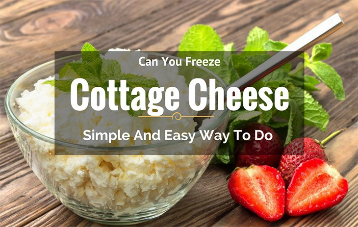 Phenomenal Can You Freeze Cottage Cheese Simple And Easy Way To Do Home Interior And Landscaping Palasignezvosmurscom
