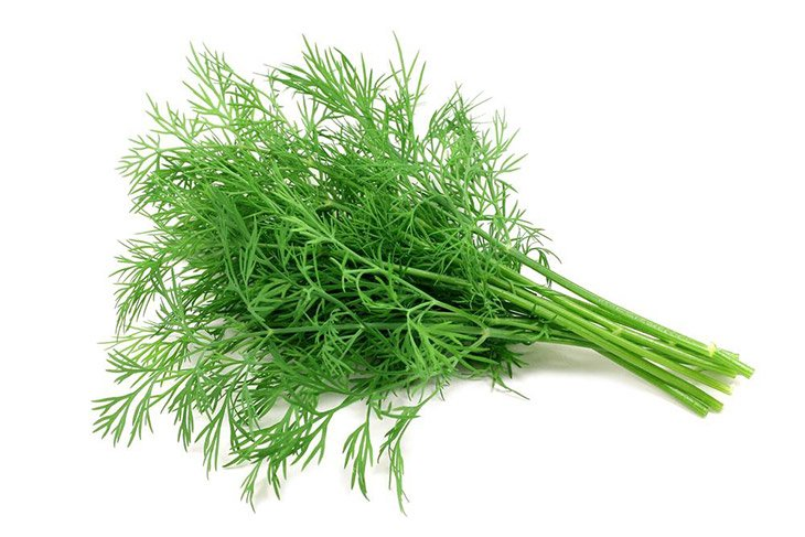 dill is great when come with fish dish