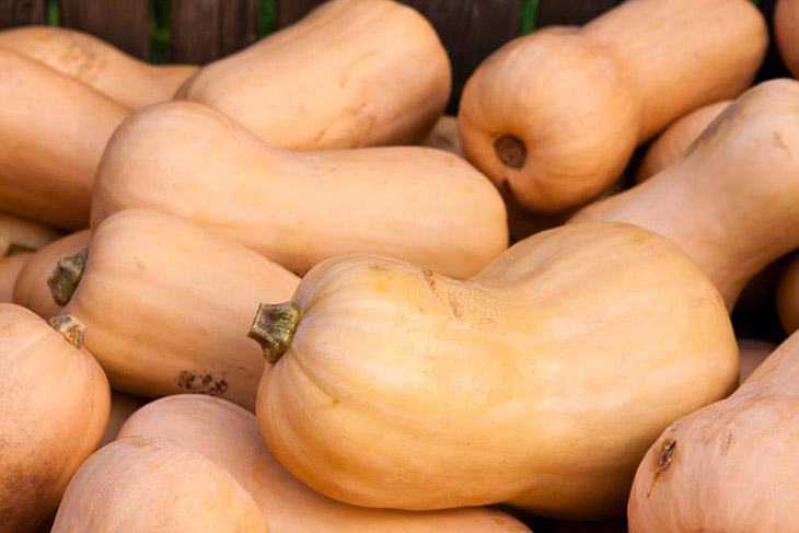 What Does Butternut Squash Taste Like? Interesting Information You Need To Know 15