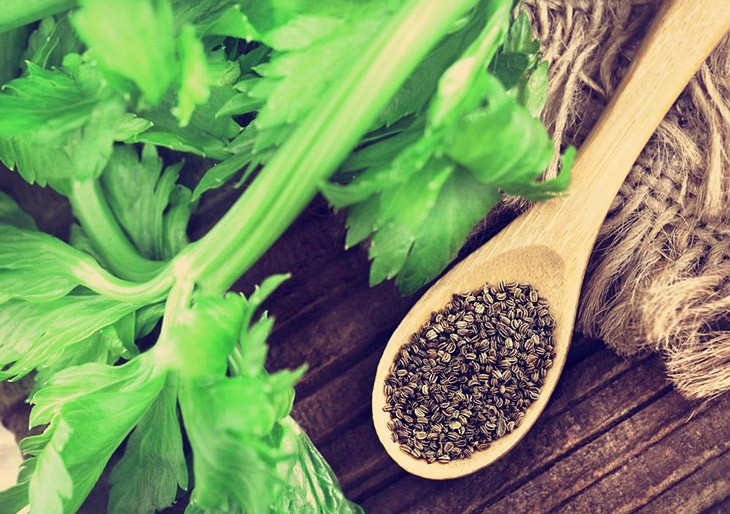What Are The Best Substitute For Celery Seed 1
