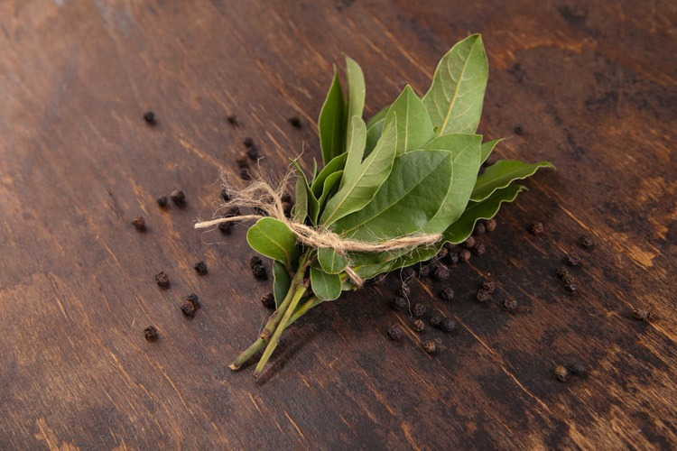 Bay Leaf is good choice for replacement curry leaf