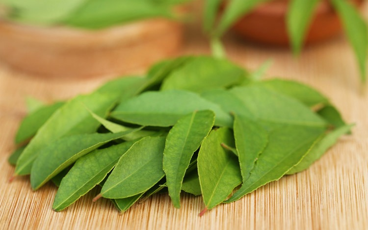 Best substitutes for curry leaf