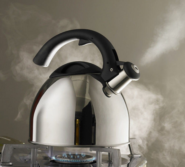 What Everyone Wants to Know About Tea Kettle vs Teapot 2
