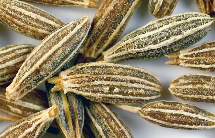 introduction-cumin-substitute