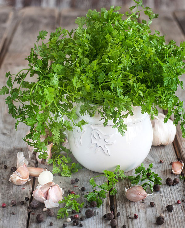 a box of chervil is on the table
