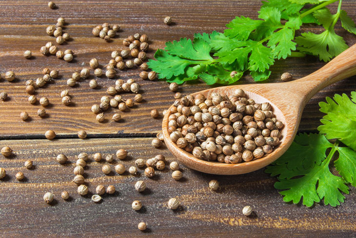 what does coriander taste like