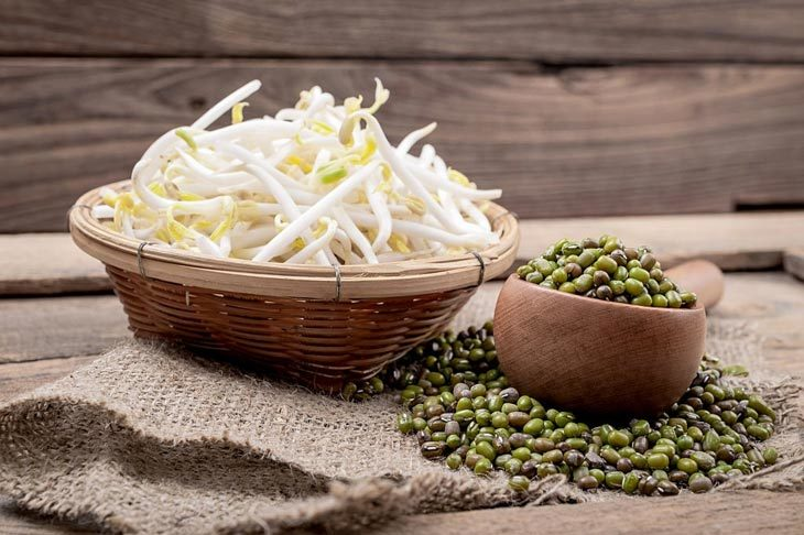 How To Store Bean Sprouts