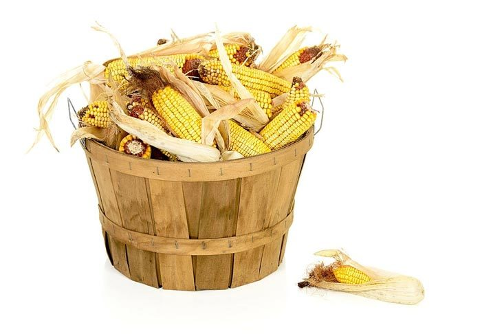 How To Cook Dried Corn
