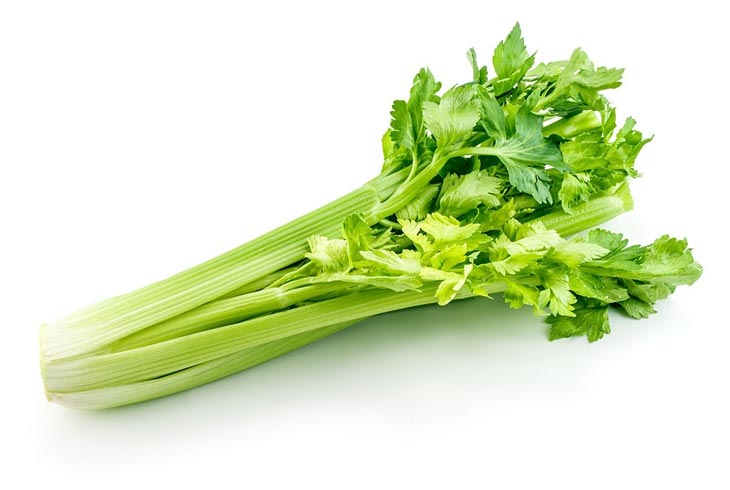 What Is Celery flavor