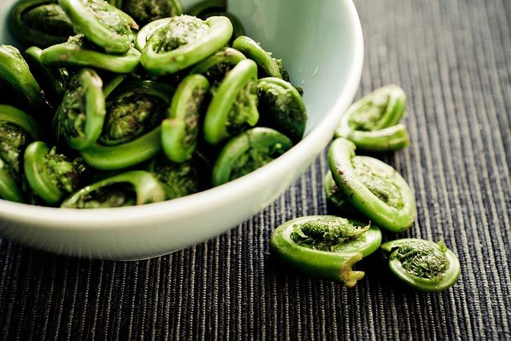 What Is Fiddlehead
