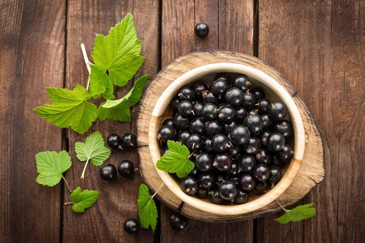 What Is A Black Currant