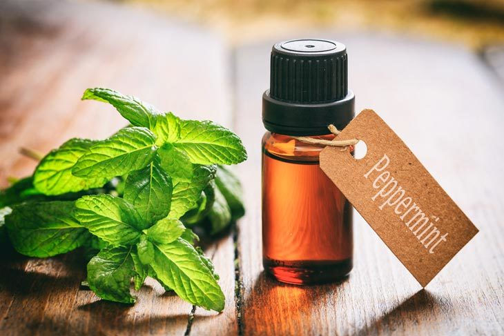 Substitute For Peppermint Extract